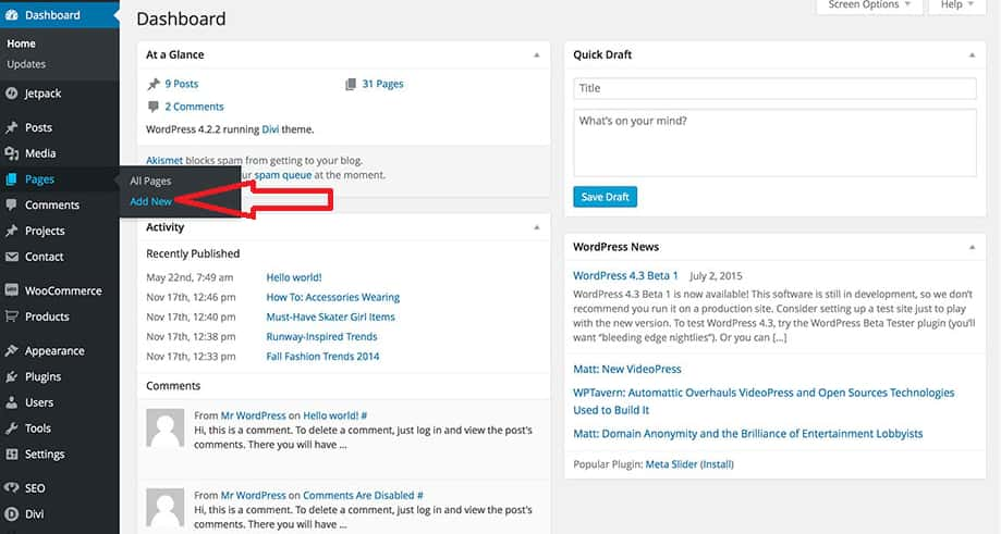 Add Page and Post To WordPress Website