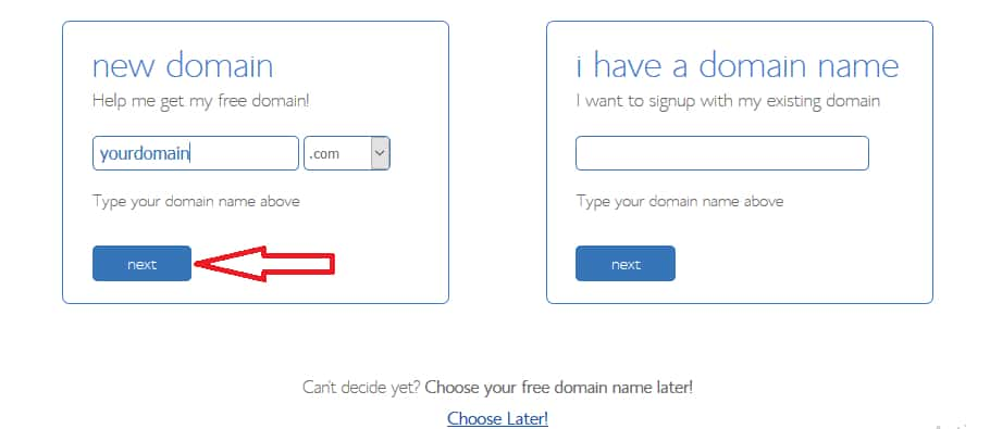 Choose Domain Name From Bluehost