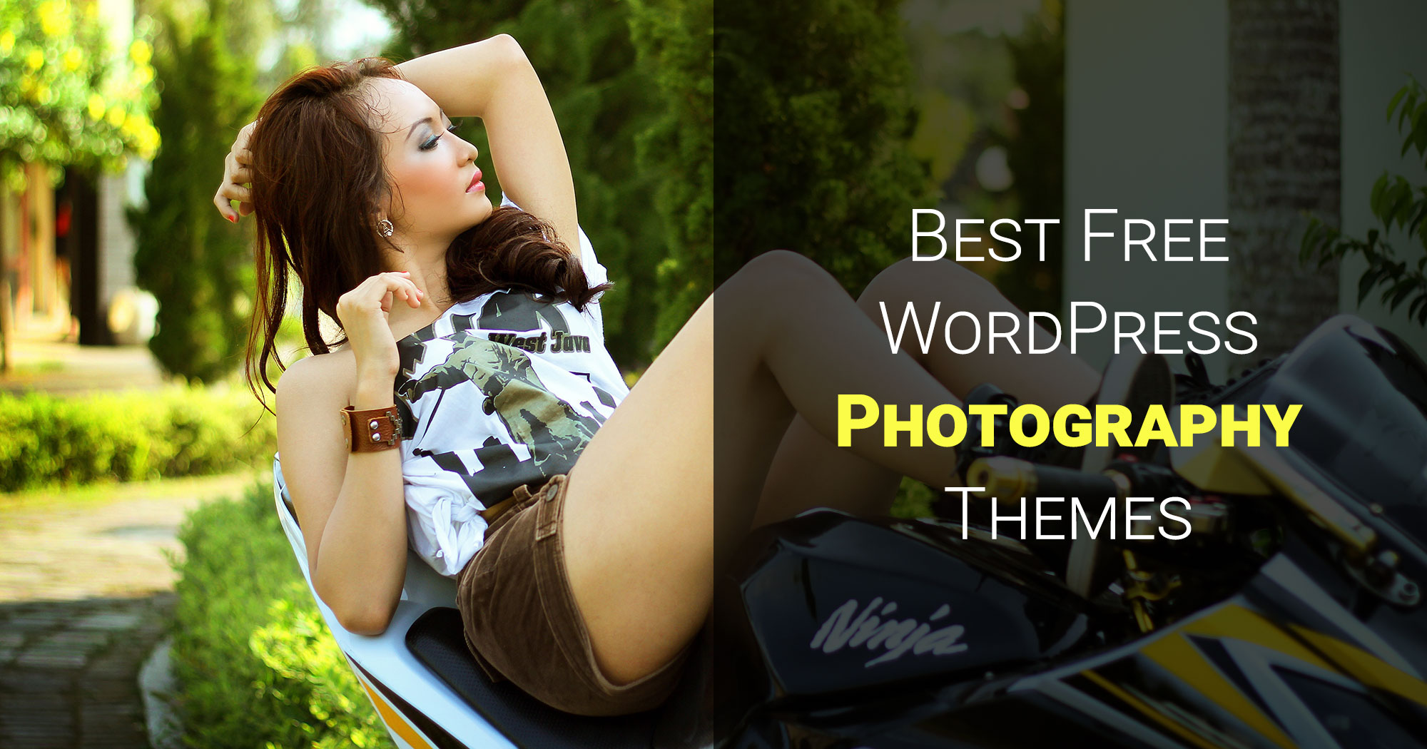 Best Free WordPress Photography Themes